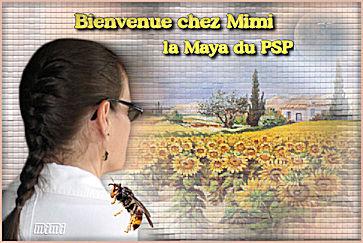 Bienvenue chez Mimi la Maya du PSP